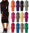 Womens Turtle Neck Turn-down collar BASIC Plain Stretch Fitted CASUAL Midi Dress