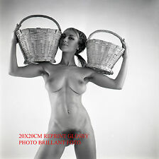 NU NUDE REPRINT GLOSSY PHOTO BRILLANT FOTO 20 X 20 CM GIRLS OF 1960'S #56
