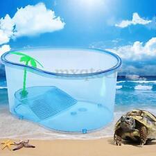 Vivarium Turtle Habitat Terrapin Lake Reptile Aquarium Tank with Platform Blue