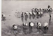 # VERCELLI - PROVINCIA: MUSICA DELLA RISAIA