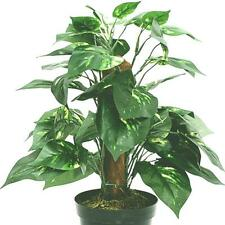 Artificial Potted Dieffenbachia Plant - House Office Plant
