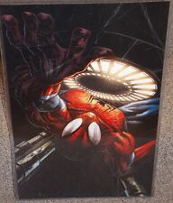 Spiderman Wall Crawler Glossy Print 11 x 17 In Hard Plastic Sleeve
