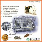 2 X RAT TRAP MOUSE MICE HUMANE RODENT CAGE CATCH LIVE ANIMAL MESH WIRE TRAPPING
