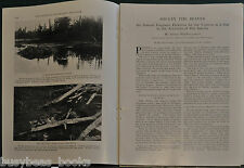 1928 magazine article, THE BEAVER, life, habitat, dam building etc