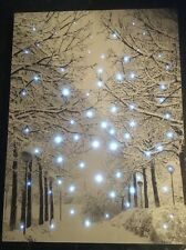 Fibre Optic Wall Art Canvas 40cm X 30cm Christmas Lights LED Tap Activated