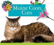 Maine Coon Cats (Domestic Cats)