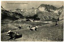 CPA 05 Hautes-Alpes Pâturages du Lautaret et Galibier animaux animé