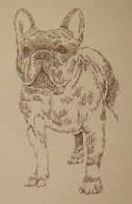 FRENCH BULLDOG DOG ART PRINT #46 DRAWN FROM WORDS Kline adds your dogs name free