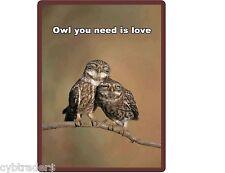 Barn  Owl in  Love Refrigerator / Locker / Tool Box  Magnet