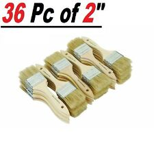 """Lot of 36 2"""" Chip Brushes Brush Perfect for Adhesives Paint Touchups 2 Inch"""