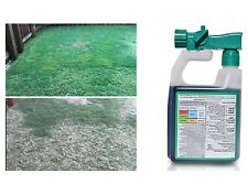 Grass Seed Lawn Care Intense Booster Natural Seed Spray Seeding Growing Simply