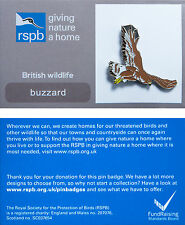 RSPB Pin Badge | Buzzard flying | GNaH backing card [00104]