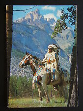 THE CANADIAN INDIAN 1991 POSTCARD