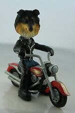 SHELTI TRI COLOR  ON A   MOTORCYCLE SEE ALL BREEDS & BODIES @ EBAY STORE
