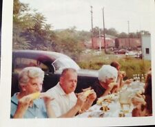 Vntg 1960's Color Photo picnic old with car in background found