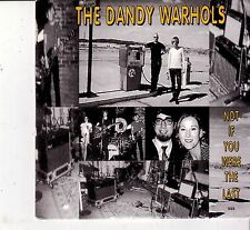 """DANDY WARHOLS """"Not if you were the Last....."""" 1 Track Promo CD im Cardsleeve"""