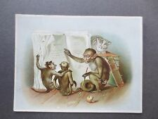 Antique Greetings Card Monkey with Glasses Teaching Reading Cat Victorian