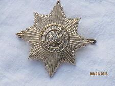Irish  Guards,Barettabzeichen,Irische Garde,Anodised Aluminium Staybright,Firmin