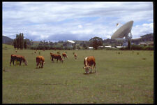 411093 Tidbinbilla Deep Space Tracking Station Australian Capital Terr A4 Photo