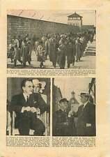 Pilgrimage Mauthausen Concentration Camp Austria/Louis Monaco 1954 ILLUSTRATION