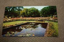 Vintage Postcard Bellingrath Gardens, Mobile, Alabama, The Lily Pool Rose Garden