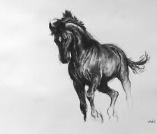 'Black II' horse art LE charcoal print mounted ready to frame by H Irvine