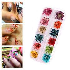 12 Couleur 3D Réal Fleur Séchée Sticker Autocollant Déco Ongles Nail Art Tips NF