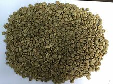 Java Arabica DP Coffee Beans Grade 1.