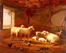 Oil painting eugene verboeckhoven sheep with chickens and a goat in a barn art