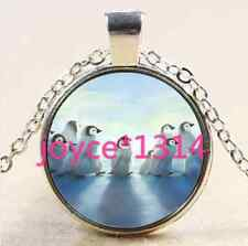 Cute penguins Cabochon Tibetan silver Glass Chain Pendant Necklace &XP-2535