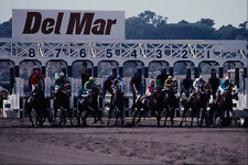 438019 Horses At The Starting Gate Del Mar Racetrack A4 Photo Print