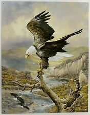 AMERICAN BALD EAGLE ART METAL SIGN Ted Blaylock Signed At Rest on River Bird NEW