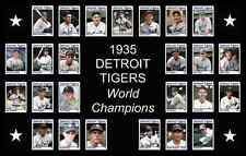 1935 Detroit Tigers World Series Team Poster History Decor Wall Art Gift Unique