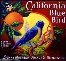 Highgrove Riverside California Blue Bird Orange Citrus Fruit Crate Label Print