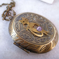 Lovely Pink Sapphire Cat Oval Brass Picture Locket Pendant Long Necklace