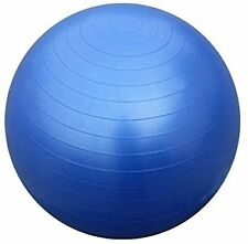 Protoner Gym Ball 65 cms fwith inflating pump Blue