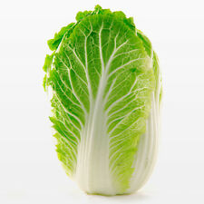 100pcs Survival Heirloom Vegetable Cabbage Seeds garden Organic Plant Seed
