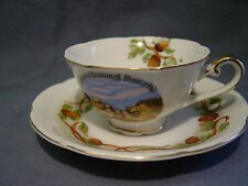 DAINTY MOUNT RUSHMORE PRESIDENT'S TEA CUP & SAUCER PINE CONE COFFEE CUP