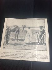 c5-2 Ephemera 1915 Ww1 Newspaper Picture Australian Army Egypt With Camel