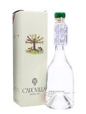 1 bt DISTILLATO DI BACCHE DI SAMBUCO CAPOVILLA 0,500 (2011 ) 41%