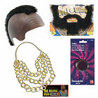 Mr T Fancy Dress Bling Mohawk Beard Gold Chain Paint