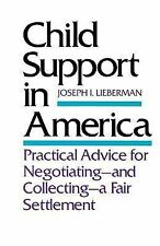 Child Support in America : Practical Advice for Negotiating and Collecting a...