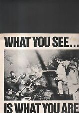 ALTERNATIVE TV - what you see....is what you are LP