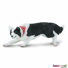 SAFARI BEST OF BREED DOGS - BORDER COLLIE