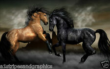 Black & Brown Horse Stalion Mustang Wall RV Trailer Mural Decal Decals Graphics
