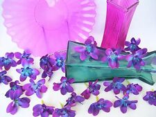 20 Silk Vibrant Teal Island Orchid Heads, Dendrobium Orchids,Teal Silk Orchids
