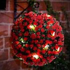 2 X 28CM SOLAR POWERED TOPIARY BALL LIGHT 20 LED GARDEN HANGING LIGHT BALL RED