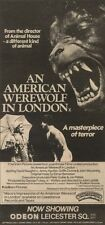 14/11/81PGN26 ADVERT: AN AMERICAN WEREWOLF IN LONDON NOW SHOWING 11X5