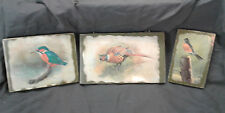 3 Lot Basil Ede Bird Pheasant Print on Wood Block Decoupage Wall Hanging VTG