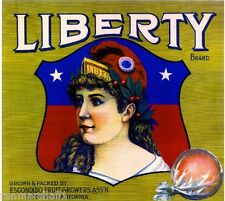 Escondido San Diego County Liberty Girl #2 Orange Citrus Fruit Crate Label Print